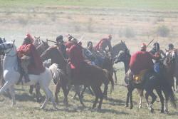 Групови каскади с коне